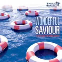 Andy Bromley - Wonderful Saviour
